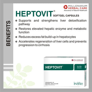 Benefits of HEPTOVIT SGC