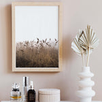 Pampas Grass Print Photography