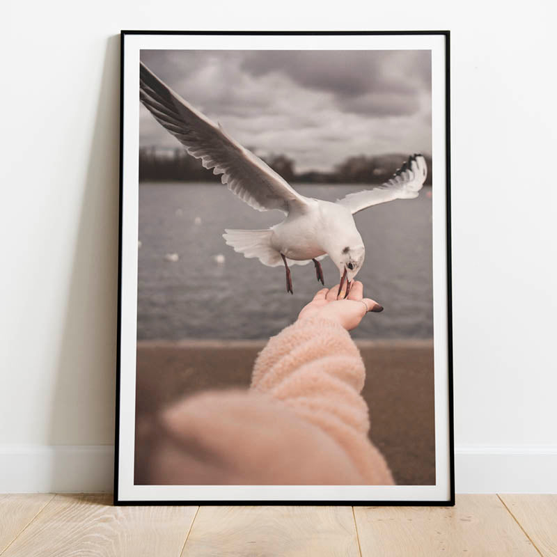 seaside bird on a hand poster