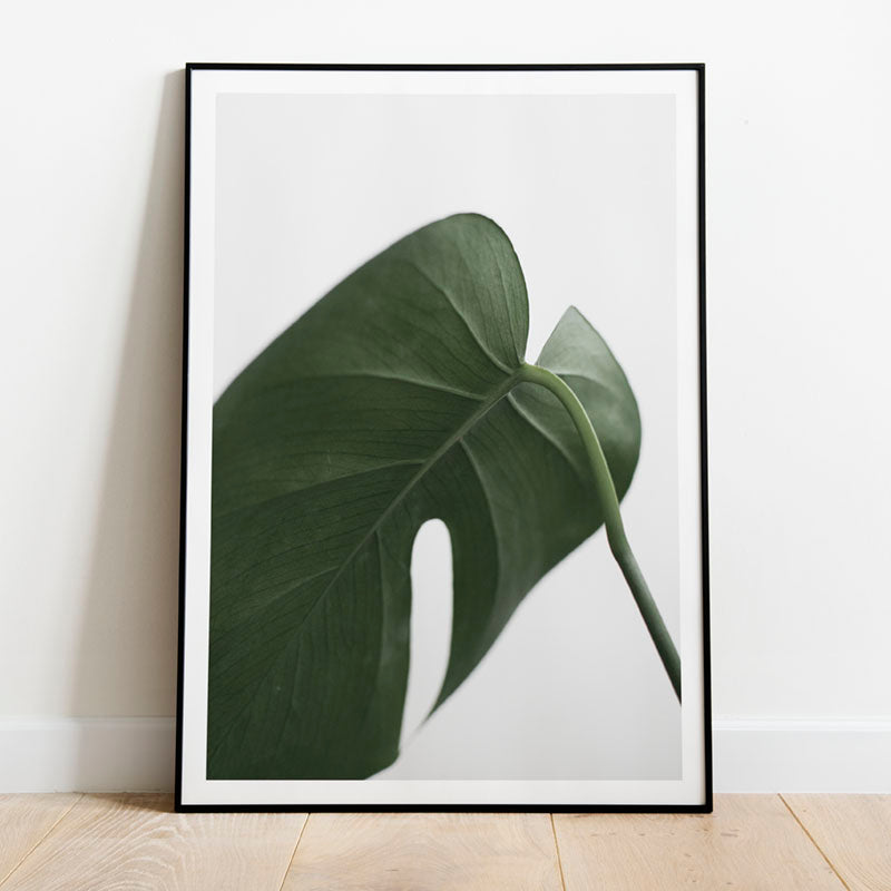 tropical leaf poster
