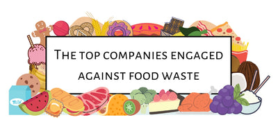 How to combat food waste? - and companies doing it great!