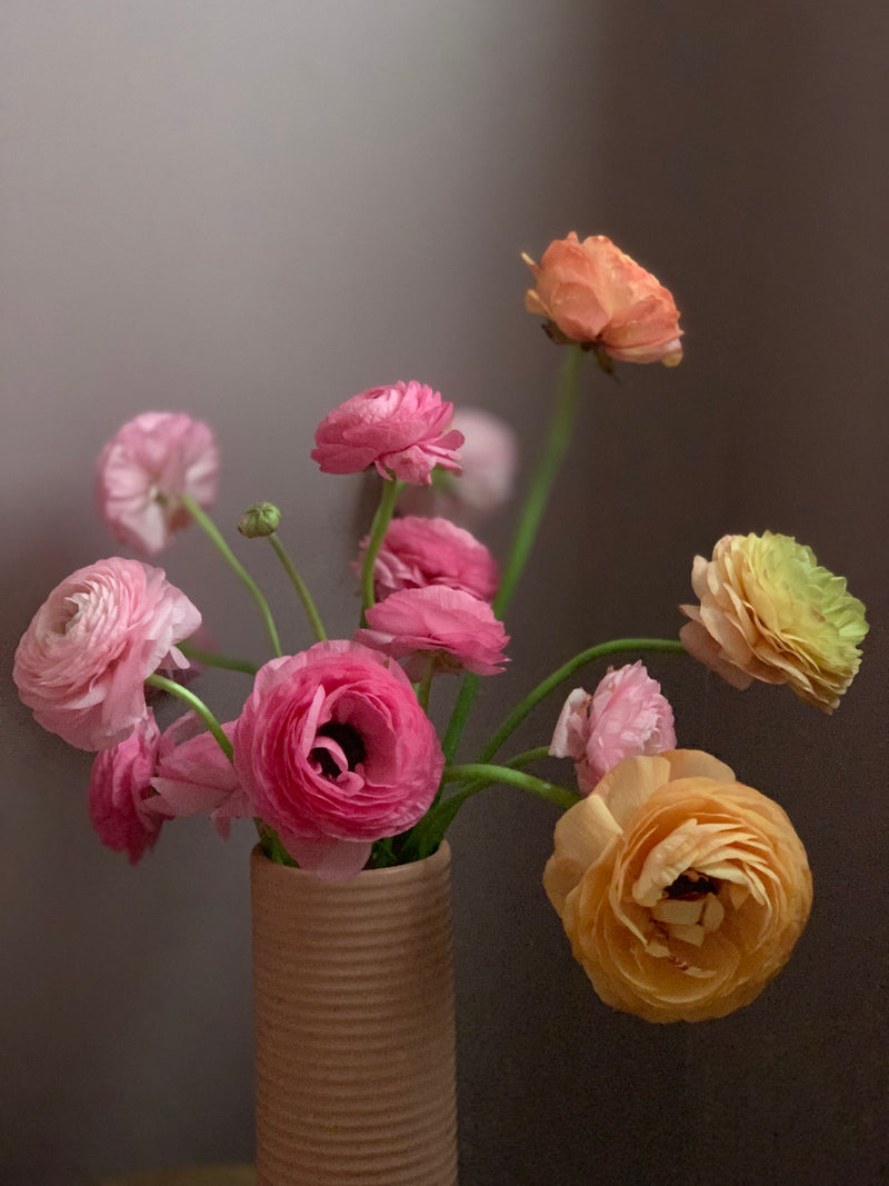 Spring Seasonal Ranunculus Subscription (3 Months)
