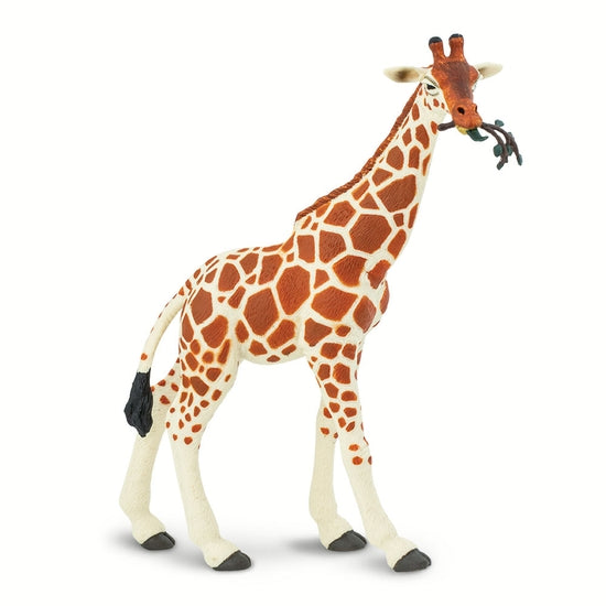 Safari Ltd. - Reticulated Giraffe