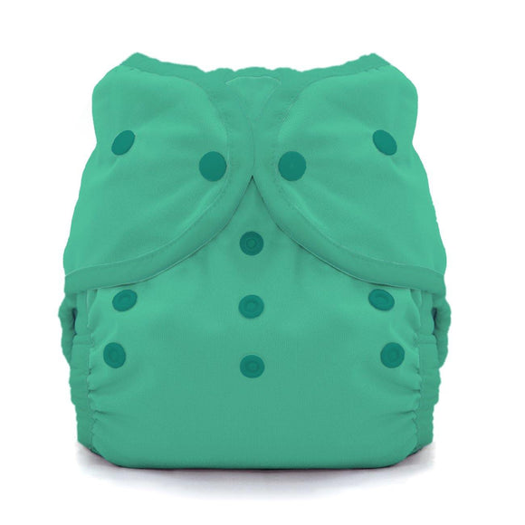 Thirsties Duo Wrap - Snaps - Seafoam - ECOBUNS BABY + CO.