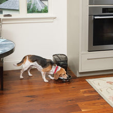 Lade das Bild in den Galerie-Viewer, Healthy Pet Simply Feed™ Programmierbarer, digitaler Futterautomat