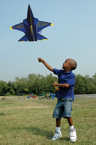 3D Jet Kite - Blue Angel