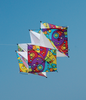 Clarke's Crystal Box Kite - Rainbow Orbit