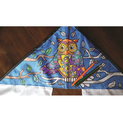 Coloring Kite - Owl