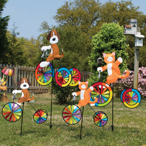19 in. Tricycle Spinner - Dog