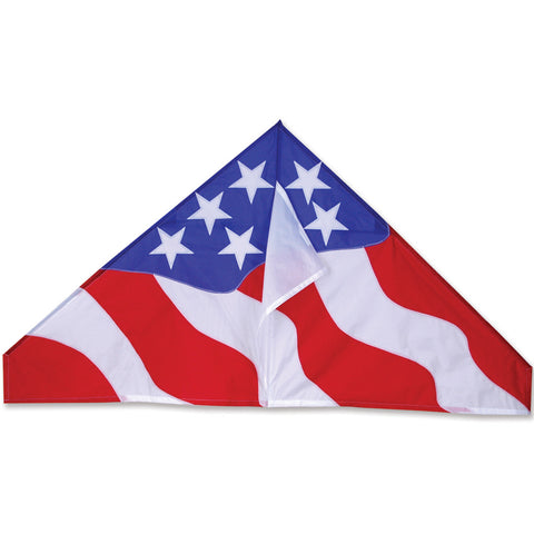 56 in. Delta Kite - Patriotic