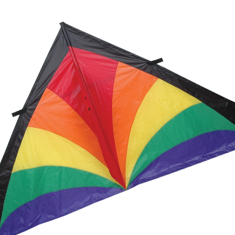 9 ft. Delta Kite - Rainbow Bursts