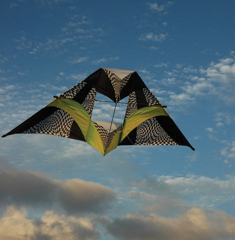 12 ft. Box Delta Kite - Citrus Op Art
