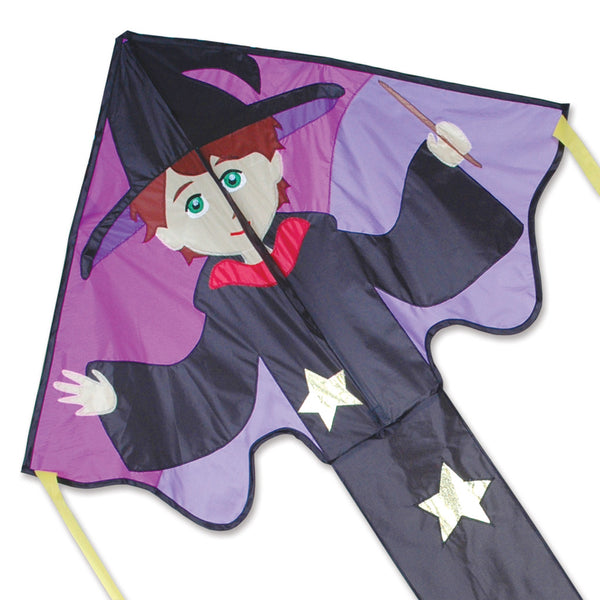 Large Easy Flyer Kite - Ned Wizard