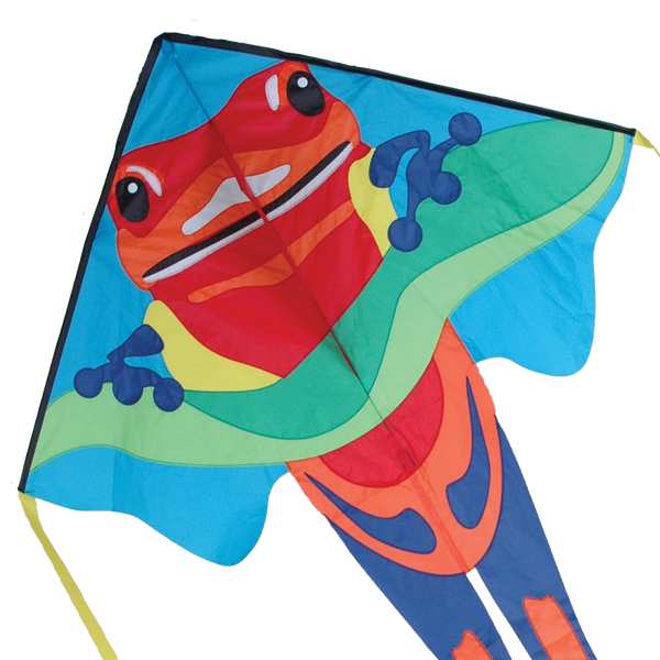 Large Easy Flyer Kite - Poison Dart