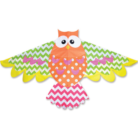 Rainbow Owl Kite