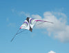 Vision Sport Kite - Raspberry Purple