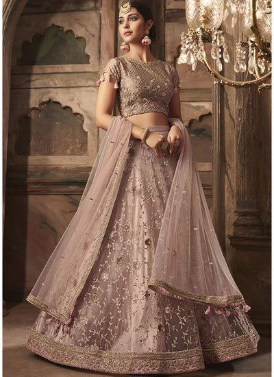 Embroidered Net Lehenga Choli in Fawn Color