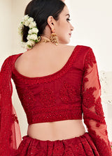 Net Embroidered Lehenga With Full Sleeve Choli