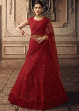 Embroidered Net Lehenga in Red