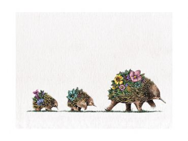 Maxwell and Williams Marini Ferlazzo Australian Families Tea Towel 50x70cm Echidna