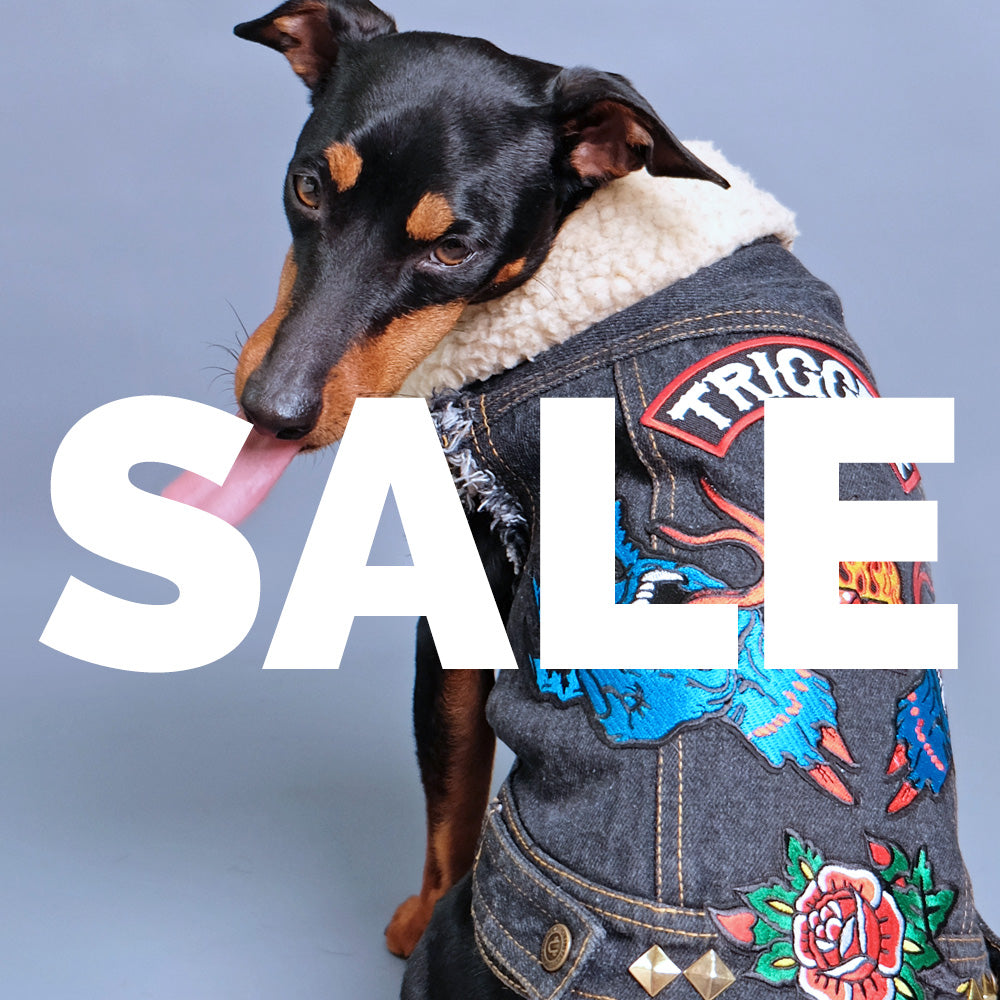 Worlds Best Denim Jackets for Dogs, Designer Dog Clothing