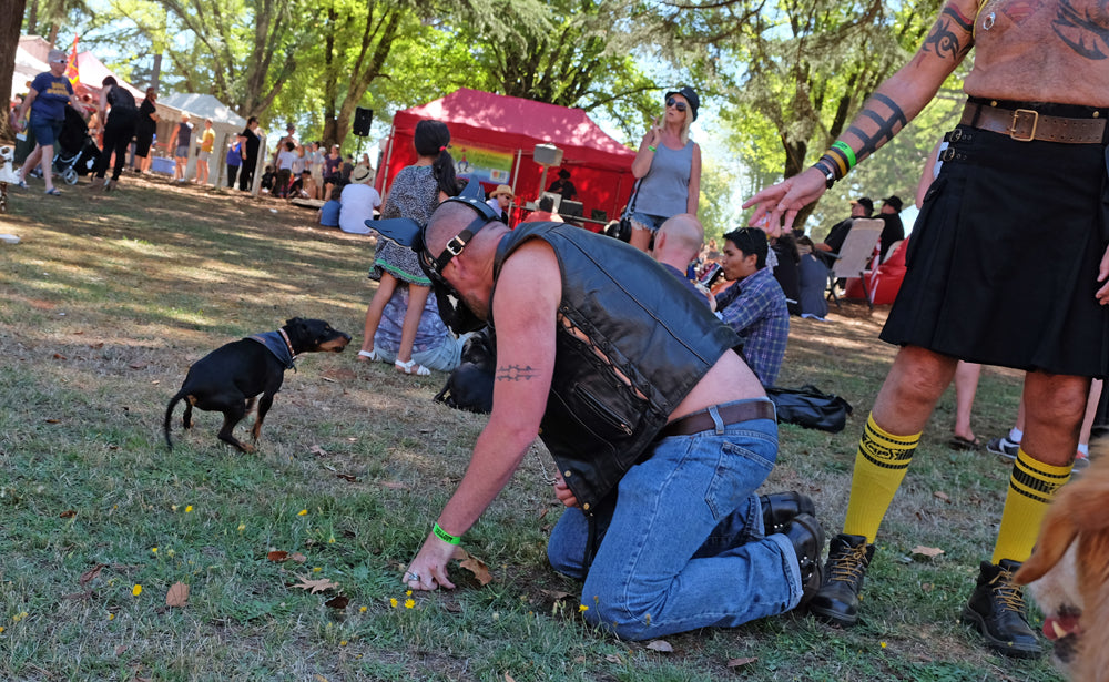 Dog people at Chillout festival