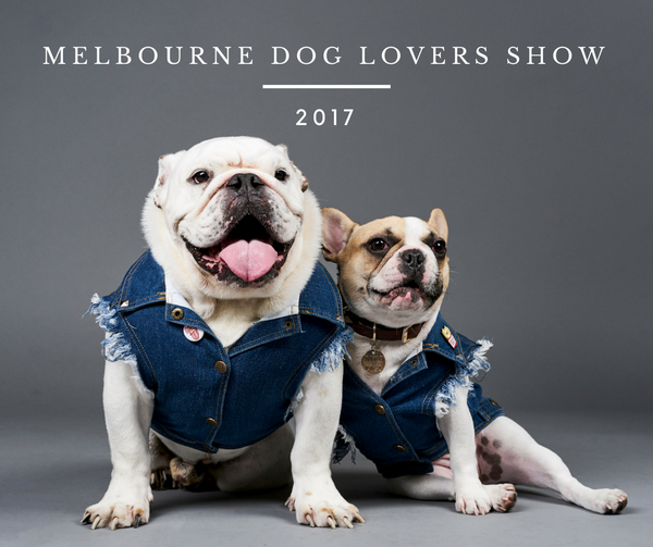 Dog Lovers Show - Pethaus denim dog clothes