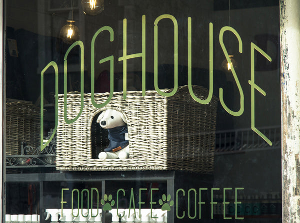 Dog House Melbourne Dog Cafe