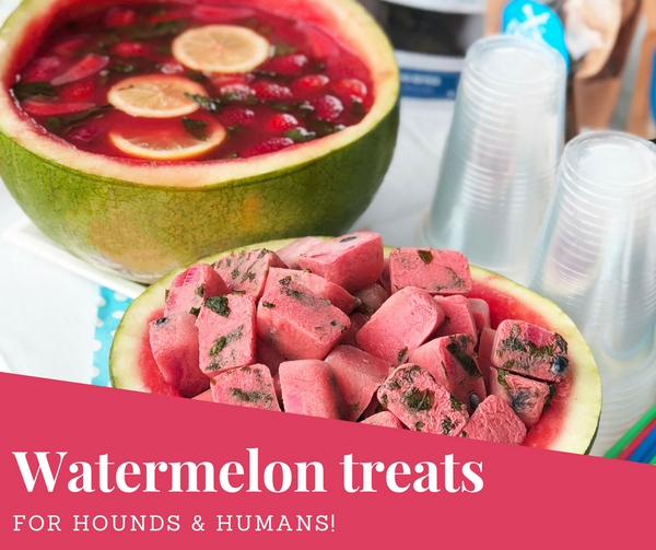 Watermelon dog treats, natural dog treats