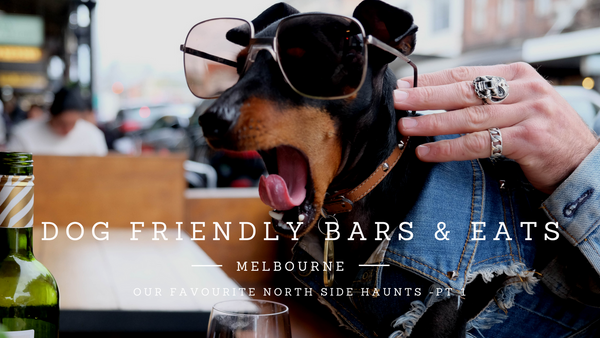Dog friendly Bars Melbourne