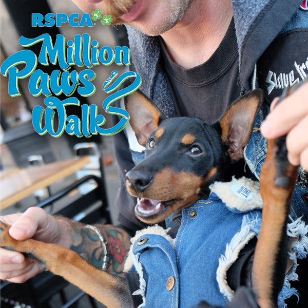 RSPCA Million Paws Walk 2017 Albert Park