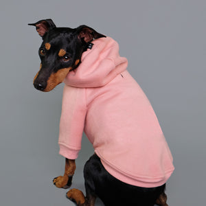 Pink dog hoodie fits big and small dogs made by Pethaus Australia