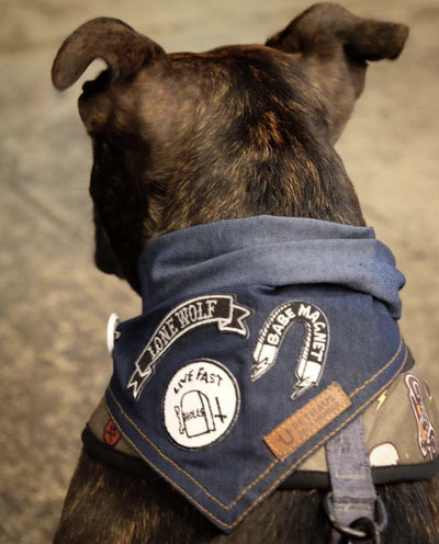 denim dog bandana with patches by Pethaus