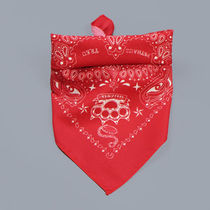 paisley dog bandana, red paisley dog bandana, australian dog bandana, in dog we trust bandana, biker dog bandana