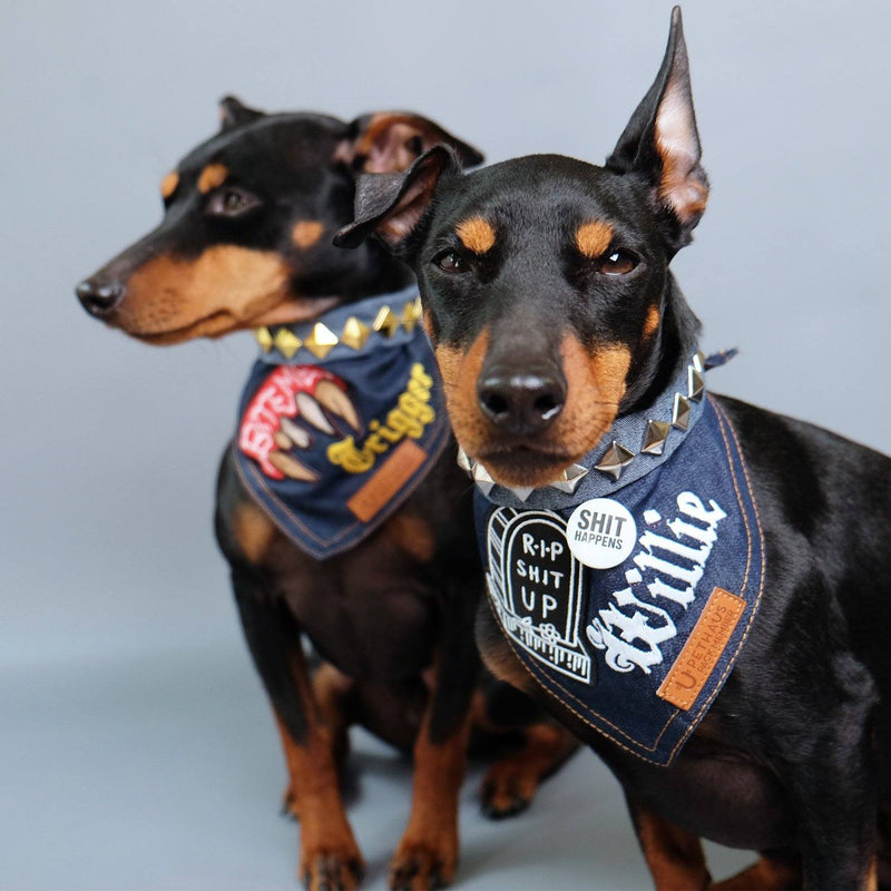 Denim Dog Bandana, Dog Bandana Studs, Custom dog bandana, Dog bandana Patches, Pethaus