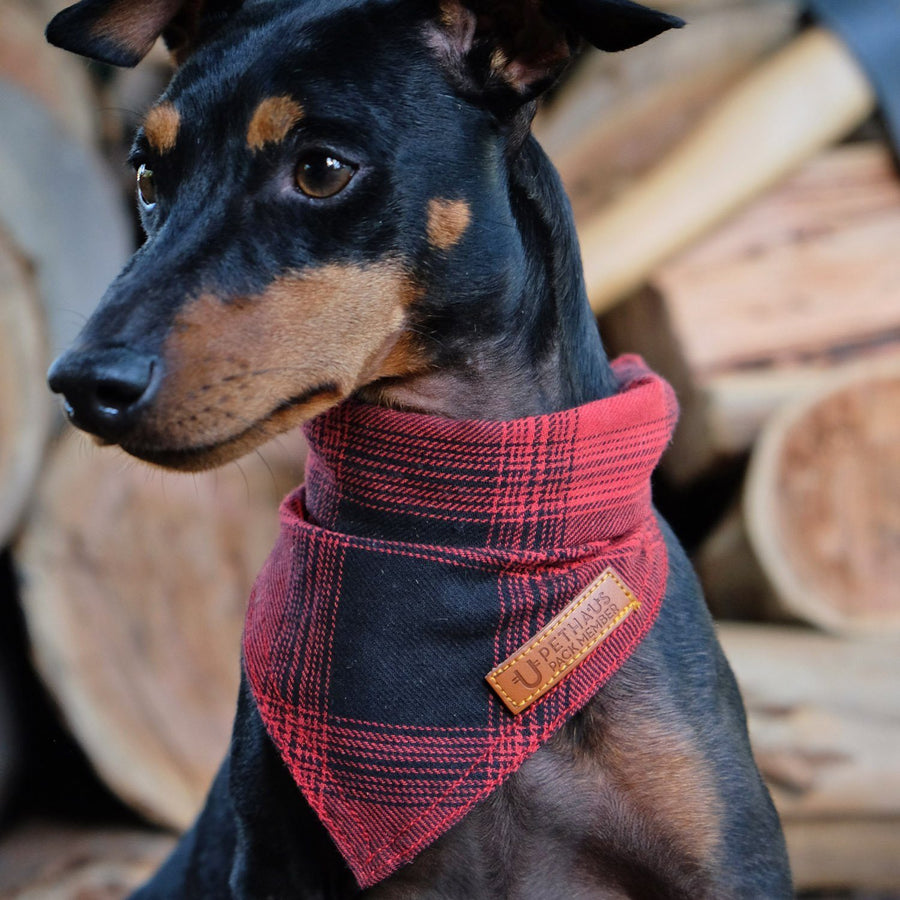 Red check dog bandana, flannel dog bandana, lumber jack dog bandana, check dog bandana, dog gift, hipster dog bandana
