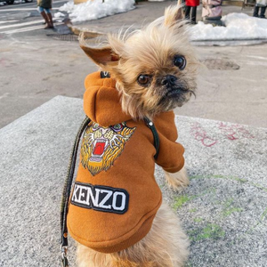 Dog hoodie with custom embroidered patches