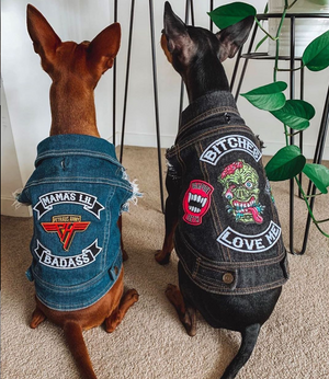 Denim dog coats with patches by pethaus