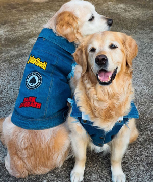 denim dog jacket, dog coat for large dogs with dog patches
