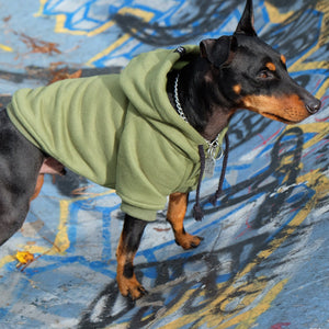 green dog hoodie by Pethaus,army green dog hoodie by Pethaus, green dog hoodie, army green dog hoodie, australia dog hoodie, pethaus