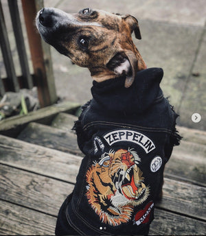 Custom Patched Dog Battle Jacket