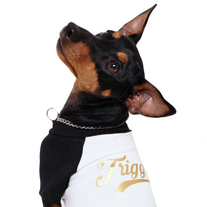 Personalised dog tee,Personalised Raglan Dog Tee, customised dog tee, dog tee, dog gift, pethaus, english toy terrier