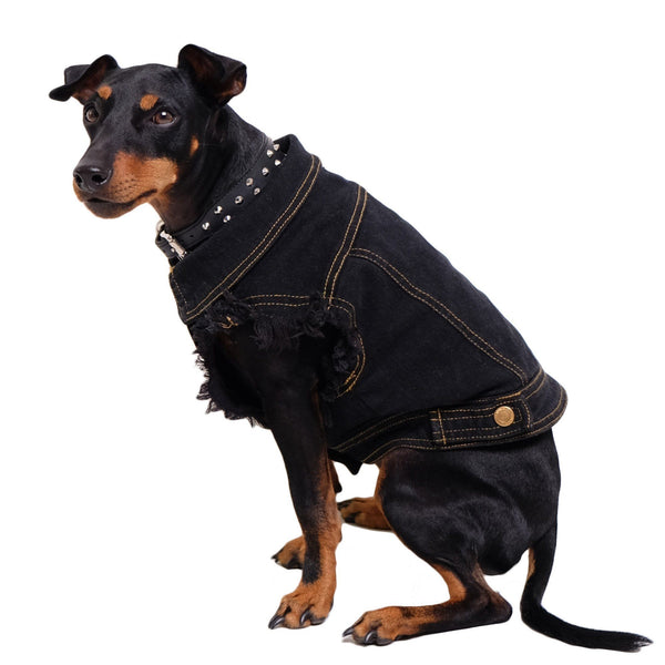 Black Denim Dog Vest, Denim Dog Jacket