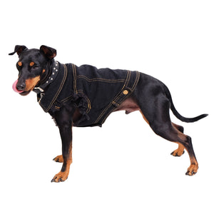 Cool denim dog clothing