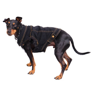Denim dog vest or denim dog jacket by Pethaus