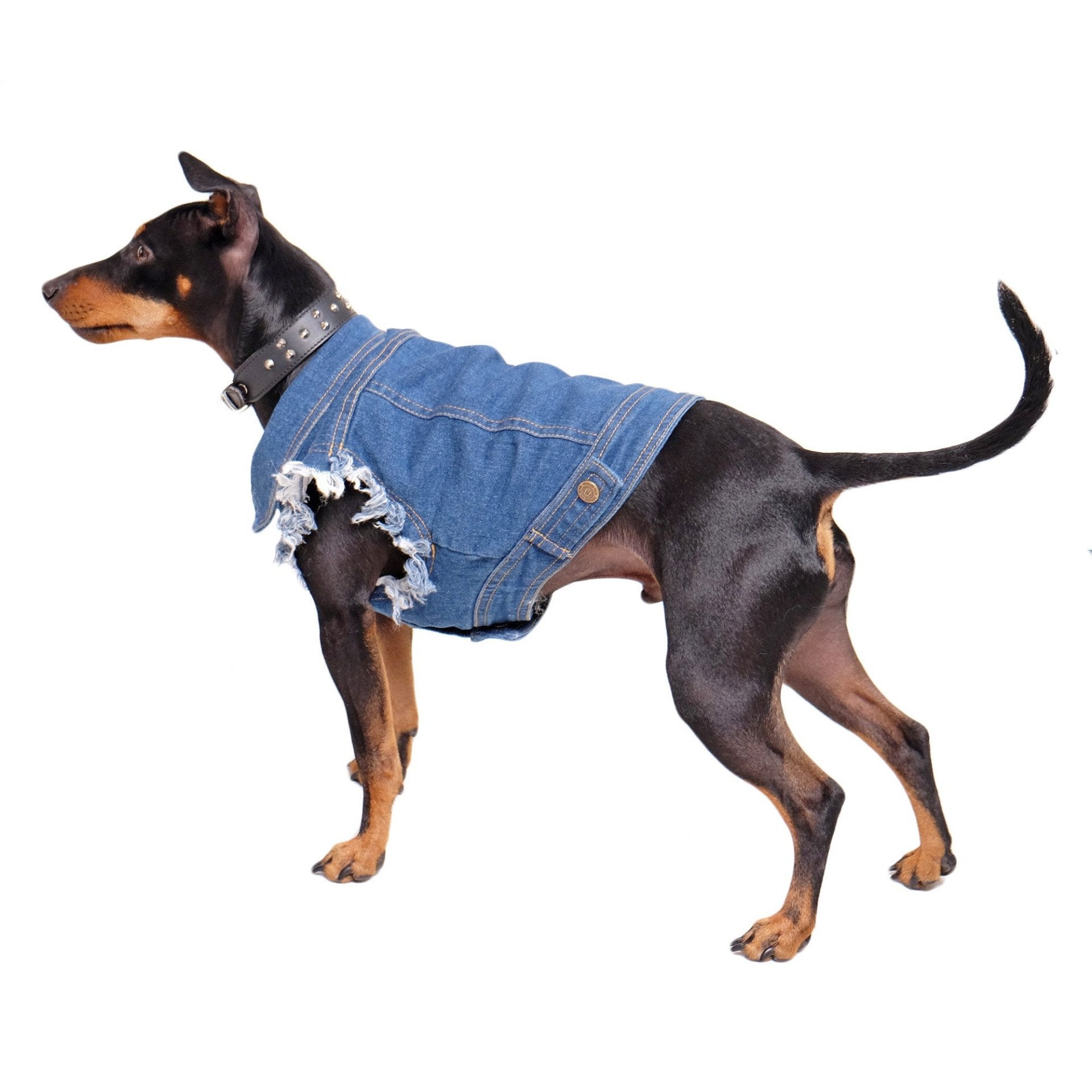 Denim Dog Vest Raw Blue - Unpatched