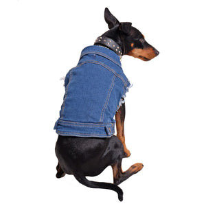 Denim dog vest , denim dog jacket, Pethaus, dog denim, Dog coat, Pethaus, Dog jacket, Australia dog coat, Large denim dog coat