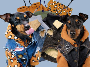 Dog Hoodie, Dog denim, denim dog vest, dog sweatshirt, dog coat, dog jacket , Pethaus