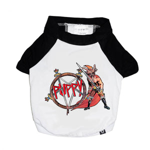 Metal band tee for dogs, Slayer dog tee, raglan dog tee