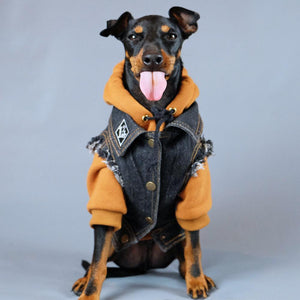 Denim dog vest with dog hoodie by Pethaus Australia